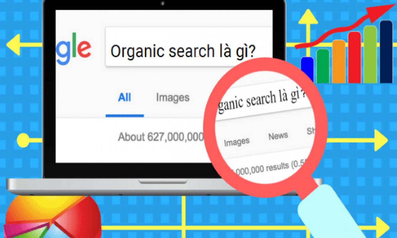 organic-traffic-la-gi-1
